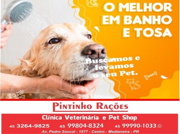 Pintinho Racoes