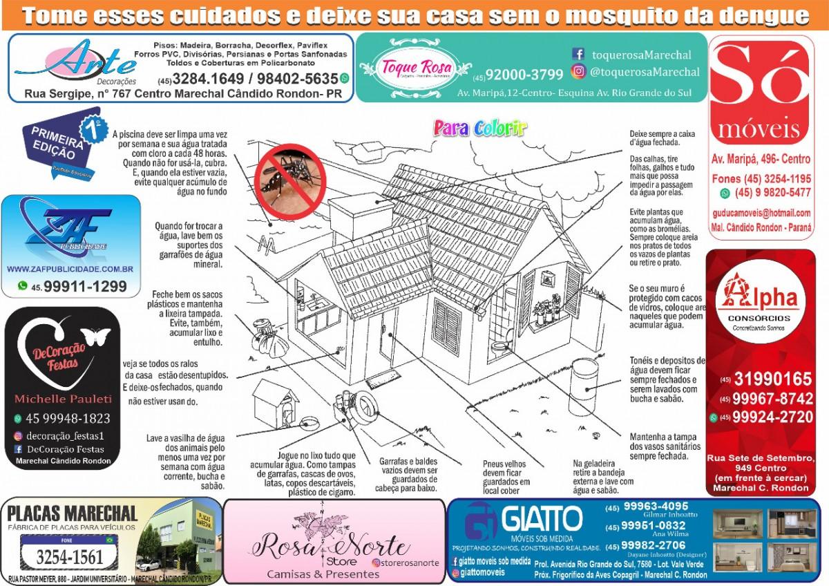 Panfleto E educativo Marechal